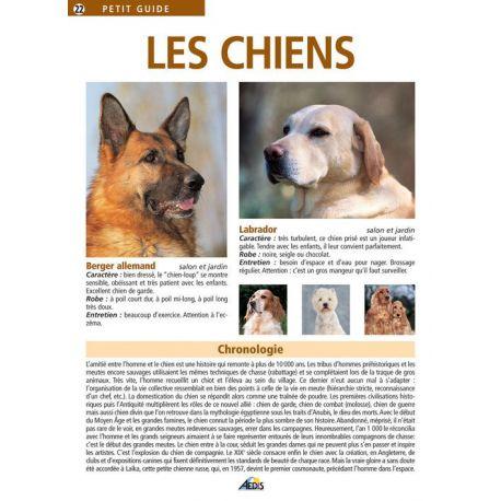 022 - LES CHIENS