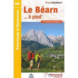 P641 LE BEARN     A PIED