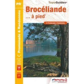 P353 BROCELIANDE  A PIED