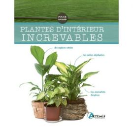 PLANTES D'INTERIEUR INCREVABLES