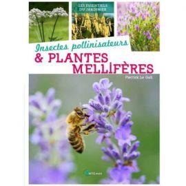 INSECTES POLLINISATEURS ET PLANTES MELLIFERES